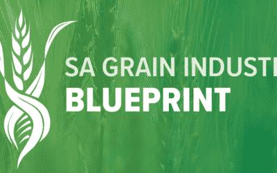 SA Grain Industry Blueprint