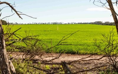 Mining on agricultural land – resources